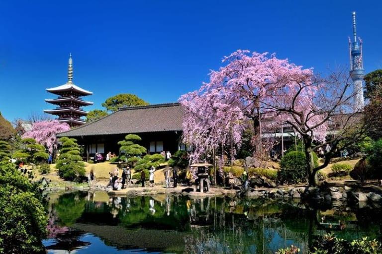 Asakusa giữa lòng Asakusa (5) – Vườn Denpōin và phố mua sắm Denpōin