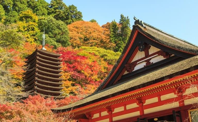 Lịch sử Nhật Bản và Thiên Hoàng (phần 4) – Tham vọng của dòng họ Soga