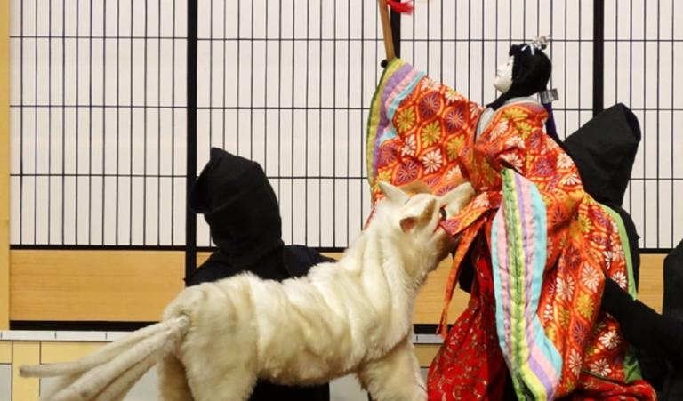 "Youkai Nhật Bản – Hồ ly ""Tamamonomae"""