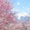 Sự kiện truyền thống Nhật Bản: Hanami