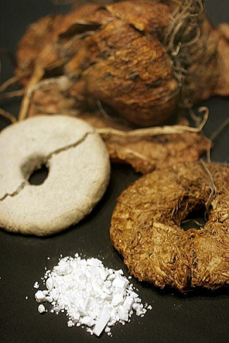 Tinh bột củ cây hoa Torepu được sơ chế thành những vòng tròn Ontorepu